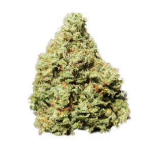 Buy Haida Gwaii OG Kush marijuana Online UK