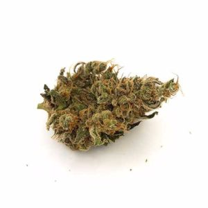 Buy Organic Harlequin Marijuana Online UK
