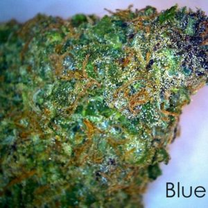 Buy Blueberry Marijuana Online UK