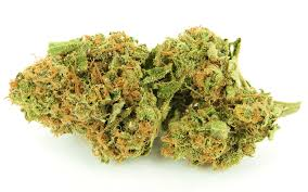 Buy Girl Scout Cookies Marijuana Online UK